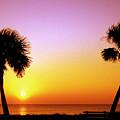 Jekyll Island Sunrise by Thomas R Fletcher