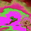 Jelks Pine 10 by Gary Bartoloni