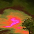 Jelks Pine 4 by Gary Bartoloni