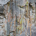 Jenn Krogue Climbs A Route Called Thin Slice Which Is Rated 5.10 by Elijah Weber
