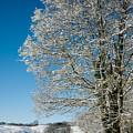 Jenne Farm Winter In Vermont by Edward Fielding