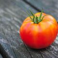 Jersey Fresh Garden Tomato by Terry DeLuco