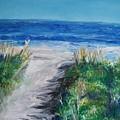 Jersey Shore Dunes  by Eric  Schiabor