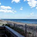Jersey Shore by Judi Saunders