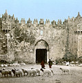 Jerusalem: Damascus Gate by Granger