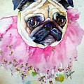 Jester Pug by Christy Freeman Stark