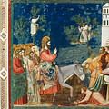 Jesus Entering Jerusalem by Granger
