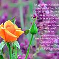 Jesus Remember Me by Debby Pueschel