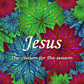 Jesus The Reason For The Season Christmas  by Donna Gonzalez
