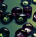 Jewelz by Lyle Hatch
