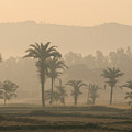 Jharkhand Early Morning by Angie Bechanan