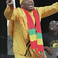 Jimmy Cliff Painting by Concert Photos