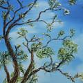 Jim's Tree by Stephen Daddona