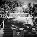 Jodo Shu Mission Lahaina Maui by Sharon Mau