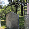 John And Priscilla Alden Gravesite  by Janice Drew
