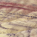 John Day Fossil Beds by Greg Vaughn - Printscapes