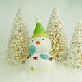 Jolly The Snowman I by Valerie Fuqua