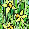 Jonquil Glory by Jim Harris