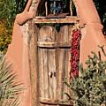 Josefina's Gate by Susan Rissi Tregoning