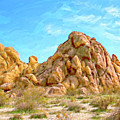 Joshua Tree Rocks by Dominic Piperata