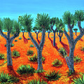 Joshua Trees by Charles and Stacey Matthews