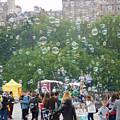 Joy Of Bubbles by Shelby Bryson