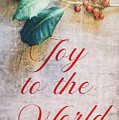 Joy To The World 2 by Andrea Anderegg