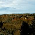 Judith River Cliffs by Tracey Vivar