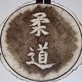 Judo Kanji by Dan LaTour