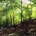Judy Woods by Paul Dene Marlor