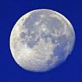 D6b6303-july 4th Moon 2015  by Ed  Cooper Photography