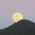 July Full Moon Rising by Margaret Brooks