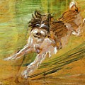 Jumping Dog Schlick 1908 by Marc Franz