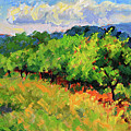 June Orchard by Keith Burgess