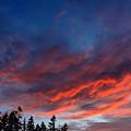 June Sunset by Nick Gustafson