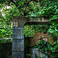 Jungle Gate Hana Maui Hawaii by Blake Webster