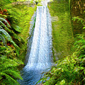 Jungle Waterfall by Les Cunliffe