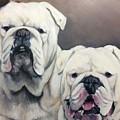 English Bulldogs  by FayBecca