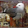 Junkyard Gull by Chuck Brittenham