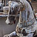 Junkyard Horse by Garry Gay