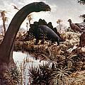 Jurassic Swamp by Granger