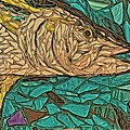 Just A Fish by Alice Gipson