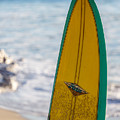 Just A Hobie Of Mine by Peter Tellone