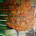 Just Before Fall by Usha Shantharam