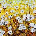 Just Cotton by Eloise Schneider Mote