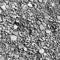 Just Rocks - Black And White by Carol Groenen