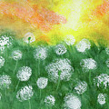 Justin's Dandelions by Alexis Grone
