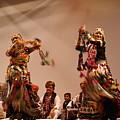 Kabelia 73 by Padamvir Singh
