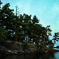 Kabetogama Shoreline by Lori Dobbs