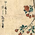 Kaido Ni Shokin - Small Bird On A Branch Of Kaidozakura by Utagawa Hiroshige
